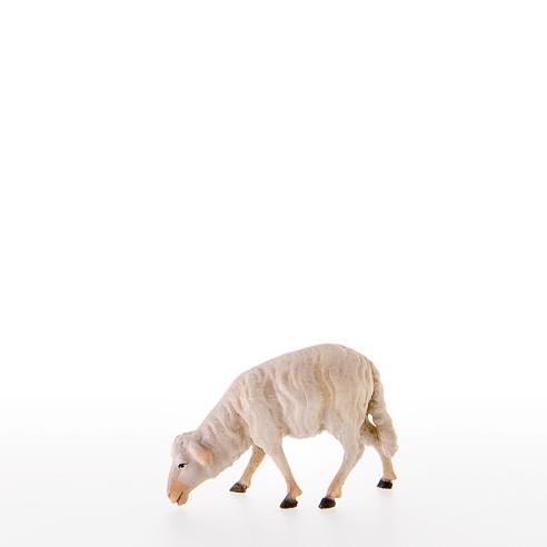 Schaf fressend Nr. 21107