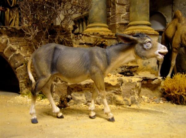 Esel gehend Heide Nr. 236304