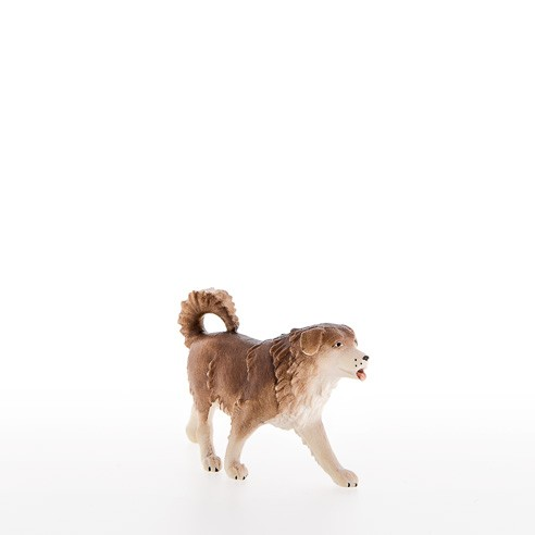 Schaeferhund Nr. 40