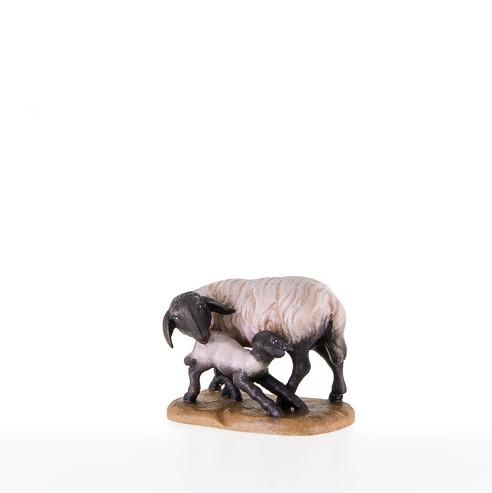 Schwarzkopfschaf mit Lamm Nr. 21200-S