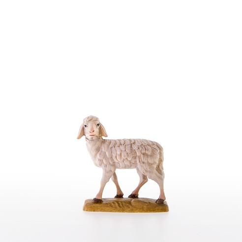 Schaf Nr. 21000