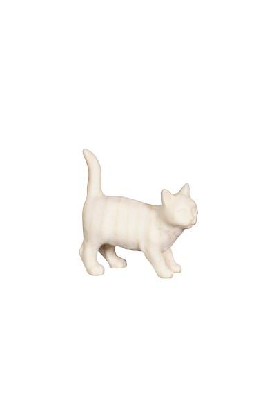 PE Katze Nr. 162