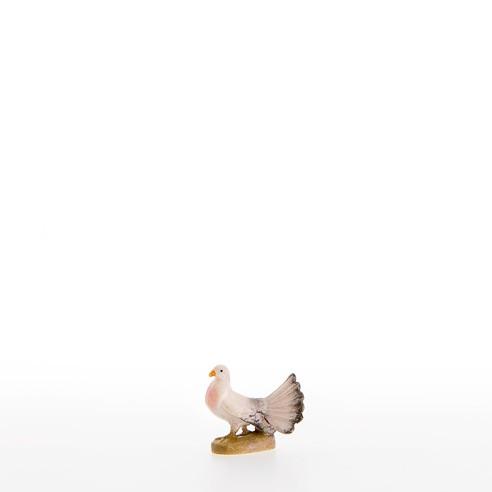 Taube Nr. 22450