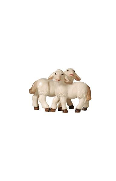 PE Lammgruppe Nr. 289