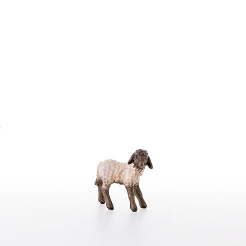 Schwarzkoepfiges Lamm stehend Nr. 21287-AS