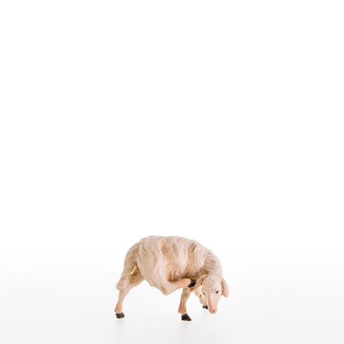 Schaf kratzend Nr. 21105