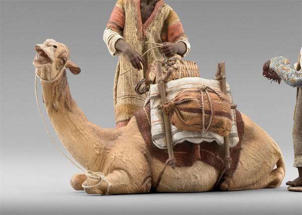 Dromedar liegend für Beduine Heide Nr. 234122B