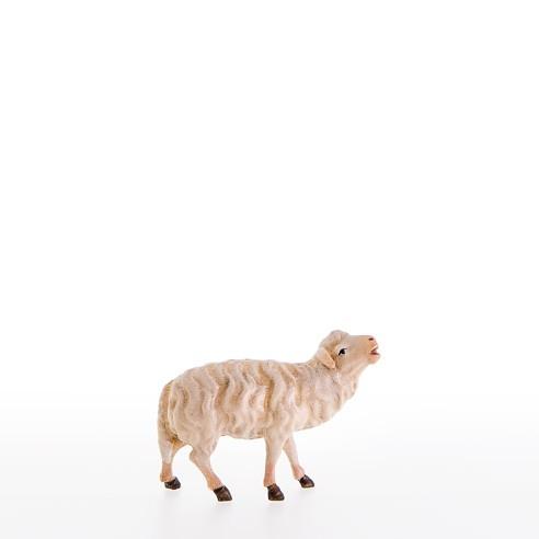 Schaf bloeckend Nr. 21104