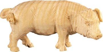 Schwein Nr. 4288