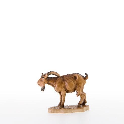 Ziege mit gesenktem Kopf Nr. 21301
