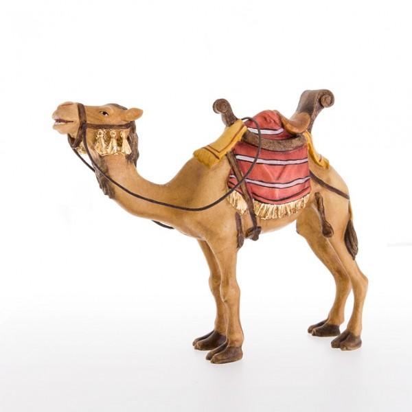 Kamel Nr. 24024-A