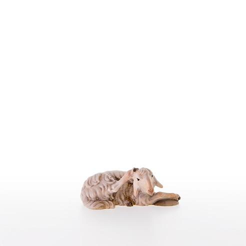 Liegendes Schaf kratzend Nr. 21210-A