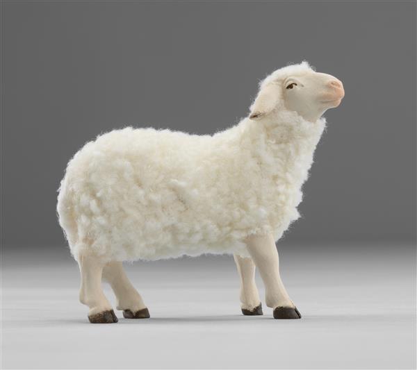 Schaf stehend mit Wolle Heide Nr. W3610S