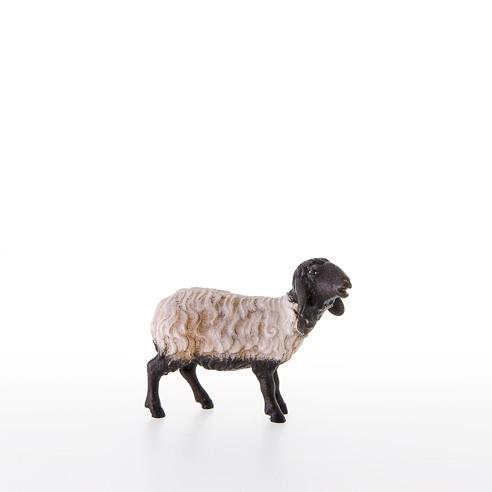 Schwarzkoepfiges Schaf stehend Nr. 21206-AS