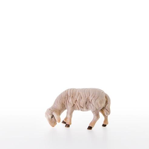 Abweidendes Schaf Nr. 21201-A