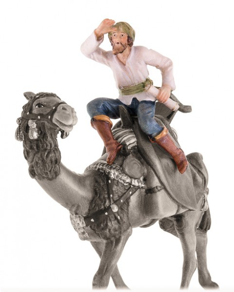 Reiter ohne Kamel Nr. 41B