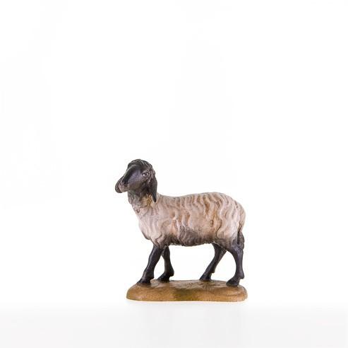 Schwarzkoepfiges Schaf stehend Nr. 21205-S