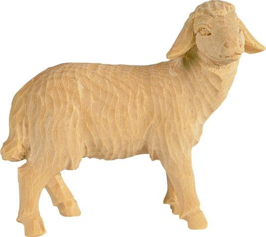 Schaf rechts schauend Nr. 4251