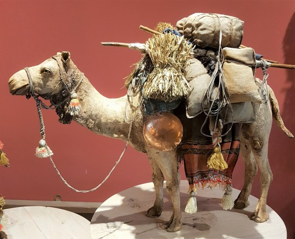 Kamel stehend