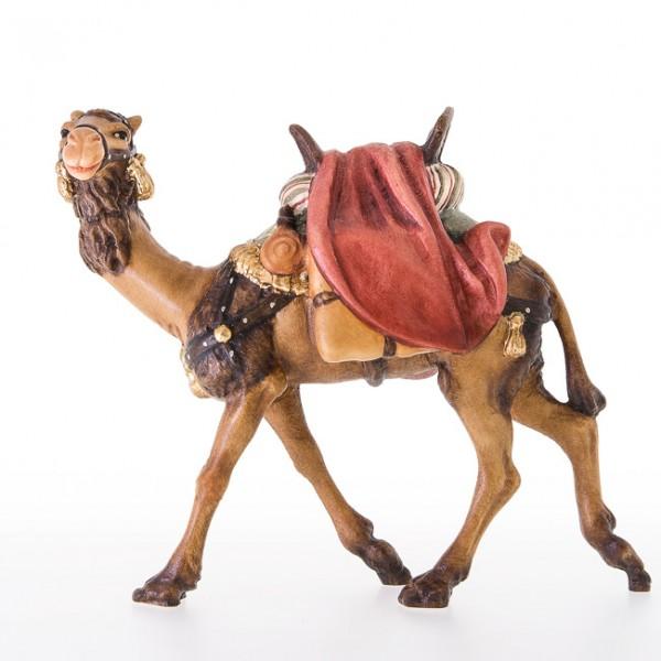 Kamel ohne Reiter Nr. 24022