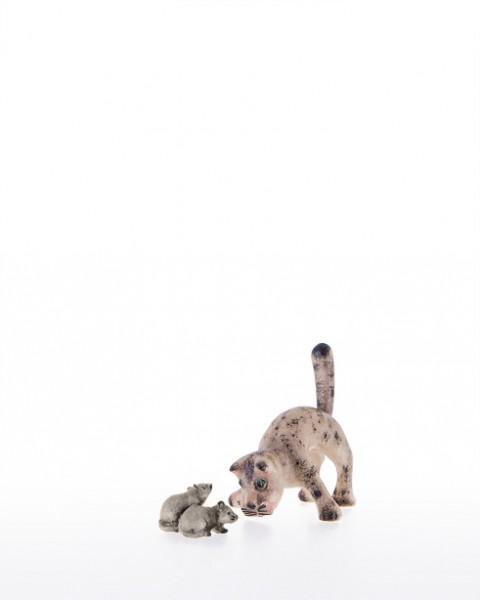 Katze mit breiten Vorderbeinen Nr. 71