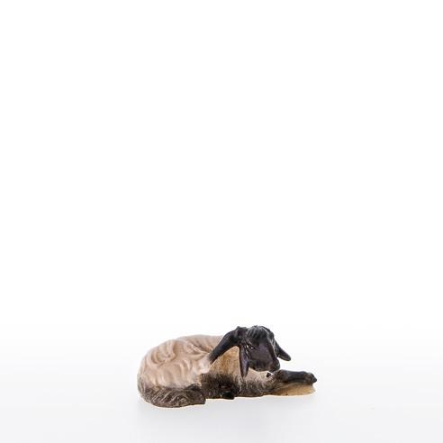 Schwarzkoepfiges Schaf liegend Nr. 21210-AS