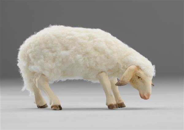 Schaf mit Wolle äsend Heide Nr. W3610B